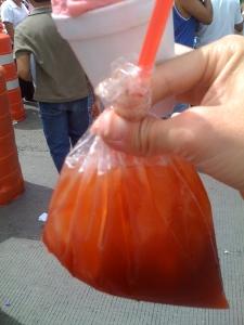 tepache bag